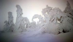 Winter in the Karkonosze