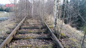 Odbudowa linii kolejowej do Karpacza - Łomnica, zarośnięte tory